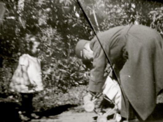 21 3 les pins maritimes pour cosaques