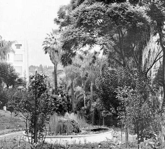 Alger - parc de Galland