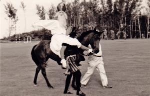 Seria 1969-3