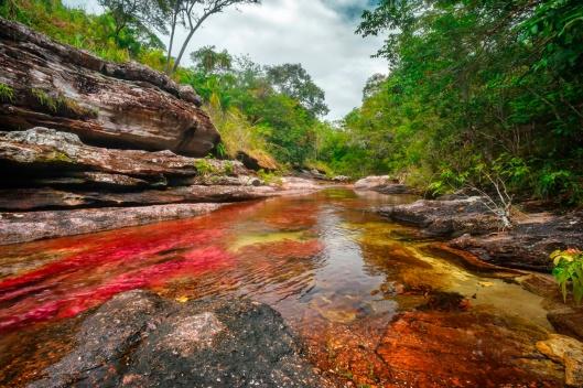 Caño Cristales, el río de colores, en La Macarena Meta